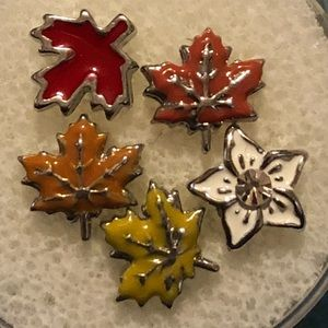 Origami Owl floating charms Fall leaves 🍁